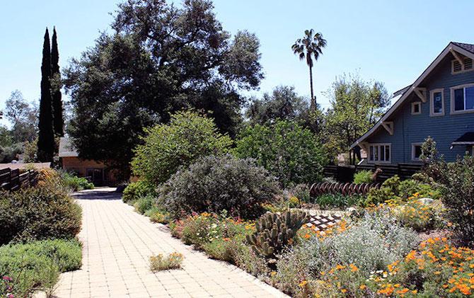 Upcoming Native Plant Garden Tour in LA